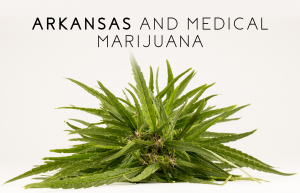 Arkansas Medical Marijuana - Everything You Need To Know