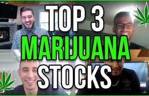 Marijuana stock videos