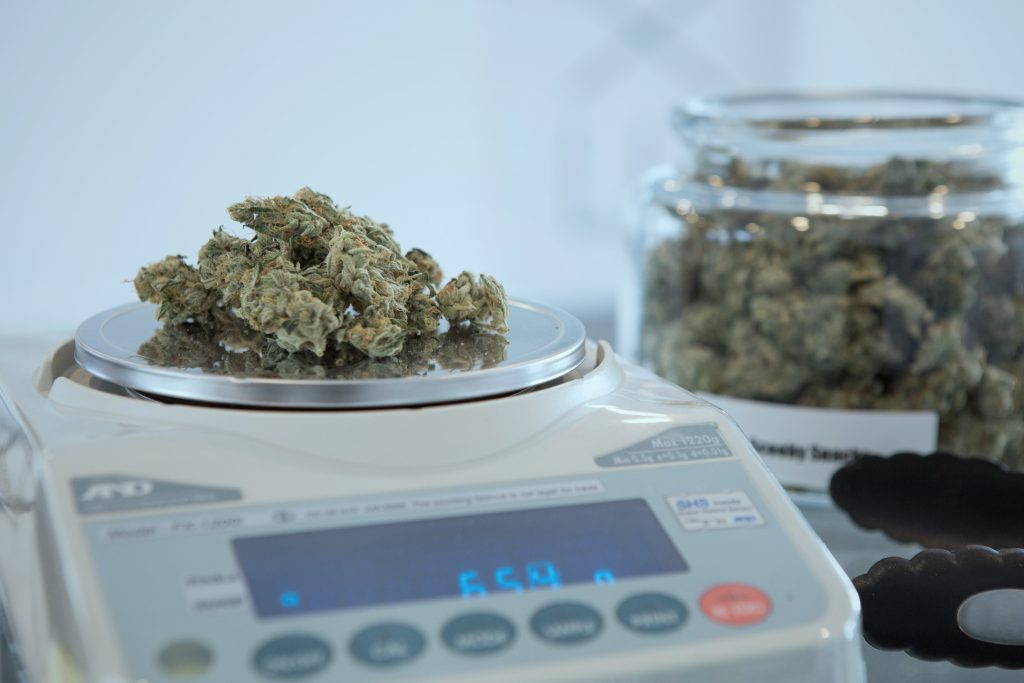 Image of marijuana being weighed