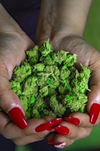 Woman holding weed in her hand