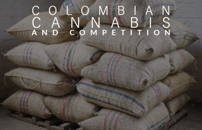 Colombian Cannabis and Competition