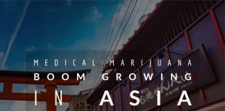 Medical Marijuana Boom Growing In Asia