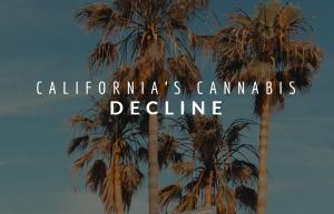 California's Cannabis Decline