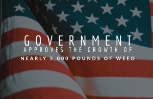 Government Approves the Growth of Nearly 5,000 Pounds of Weed
