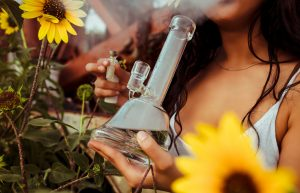Maryland Court Rules the Smell of Cannabis Cannot Warrant a Search
