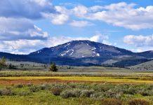 Montana. Photo Courtesy of Kerry via Pexels.