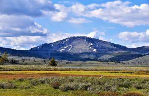 Environmental Groups Endorse Cannabis Legalization in Montana